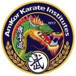 Amkor Karate Institute of Collegeville, Inc.
