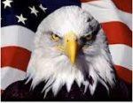 Eagle Eye Home Inspection Pro, LLC